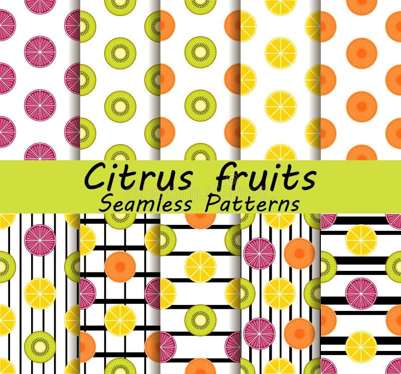 Grupo sem emenda do teste padrão das citrinas Laranja, quivi e limão Frutos com as raias pretas no fundo Vetor ilustração stock