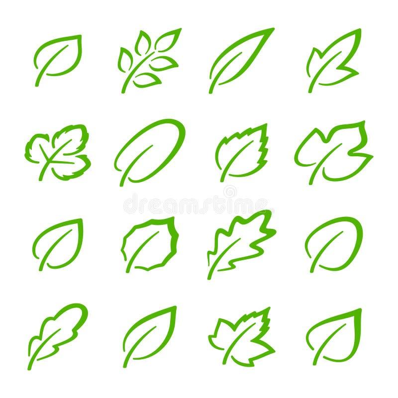 Grupo simples de ícones verdes lineares do vetor das folhas ilustração stock