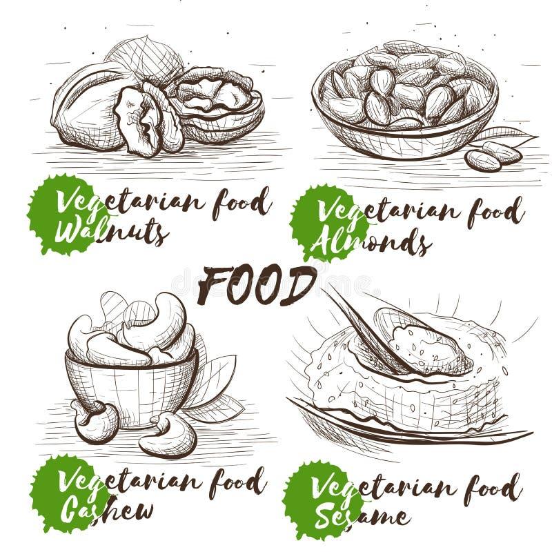 Grupo tirado mão com porcas Nutrição saudável do vegetariano Esboço do vetor do alimento do vintage ajustado para o menu do resta ilustração royalty free