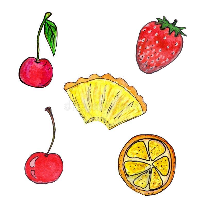 Grupo tirado mão da aquarela de frutos e de bagas isolados no fundo branco ilustração do vetor