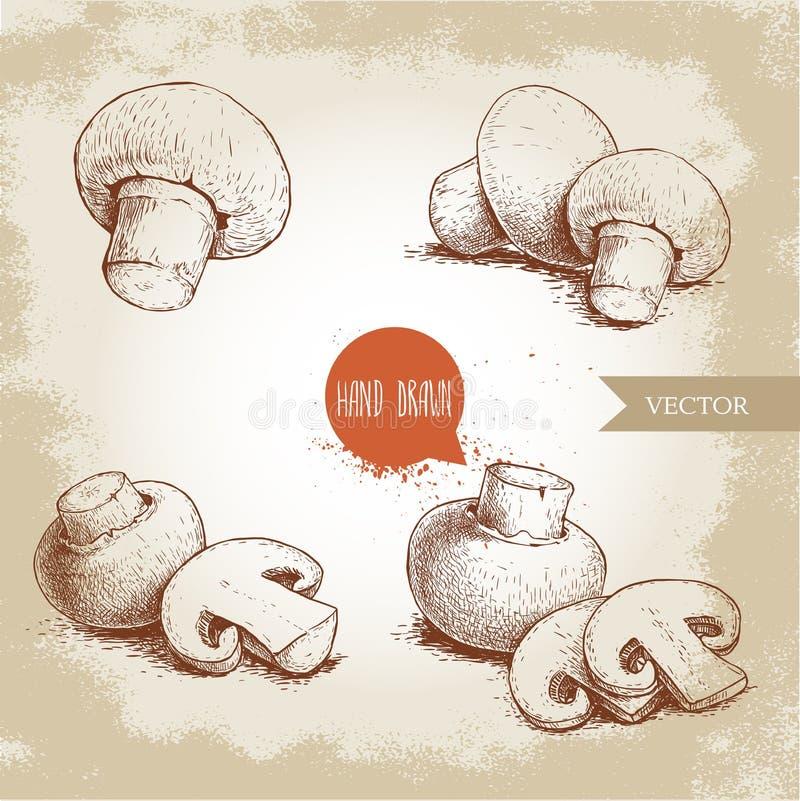 Grupo tirado mão da composição do cogumelo do cogumelo do estilo do esboço Cortes do todo e da fatia Coleção dos alimentos fresco ilustração do vetor