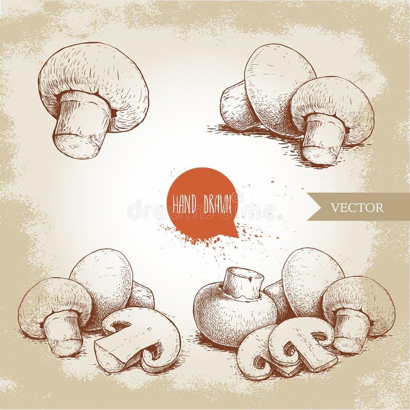 Grupo tirado mão da composição do cogumelo do cogumelo do estilo do esboço Cortes do todo e da fatia Coleção dos alimentos fresco ilustração stock