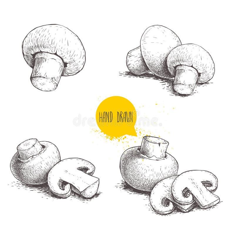 Grupo tirado mão da composição do cogumelo do cogumelo do estilo do esboço Cortes do todo e da fatia Coleção dos alimentos fresco ilustração royalty free