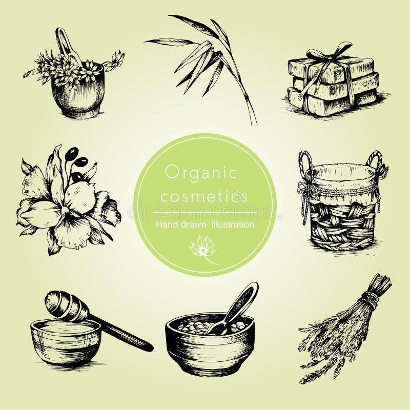 Grupo tirado mão de atributos orgânicos dos cosméticos Ilustração do vetor Estilo do vintage ilustração royalty free