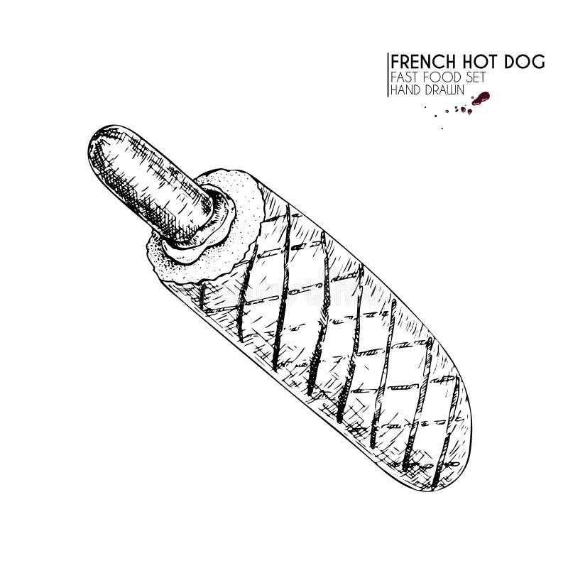Grupo tirado mão de fast food Cachorro quente grelhado francês com salsicha tipo frankfurter, molhos Ilustração gravada do vetor  ilustração stock