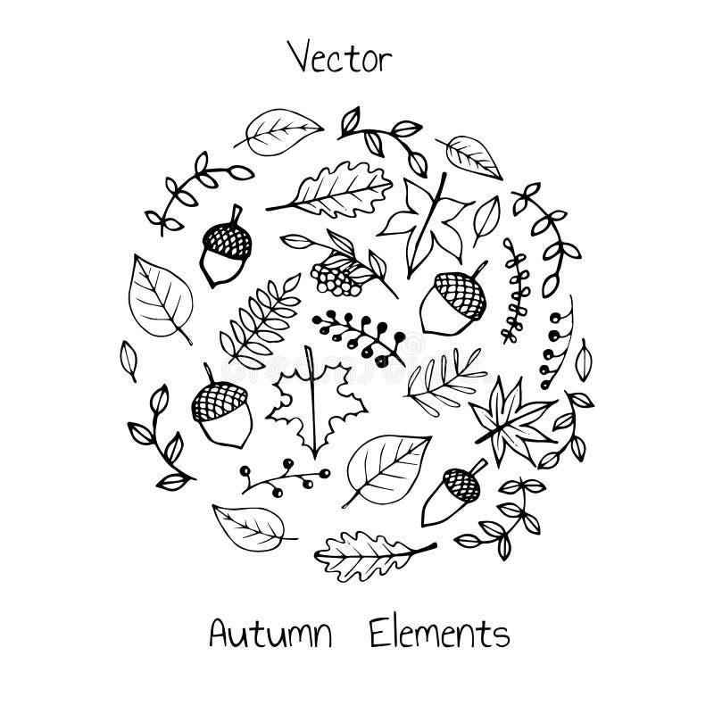 Grupo tirado mão do vetor de elementos do outono: folha, bagas e bolotas ilustração stock