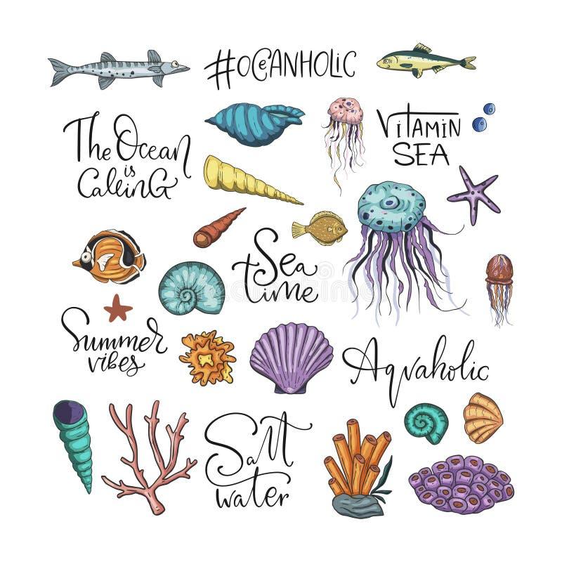 Grupo tropical do vetor do oceano ilustração royalty free