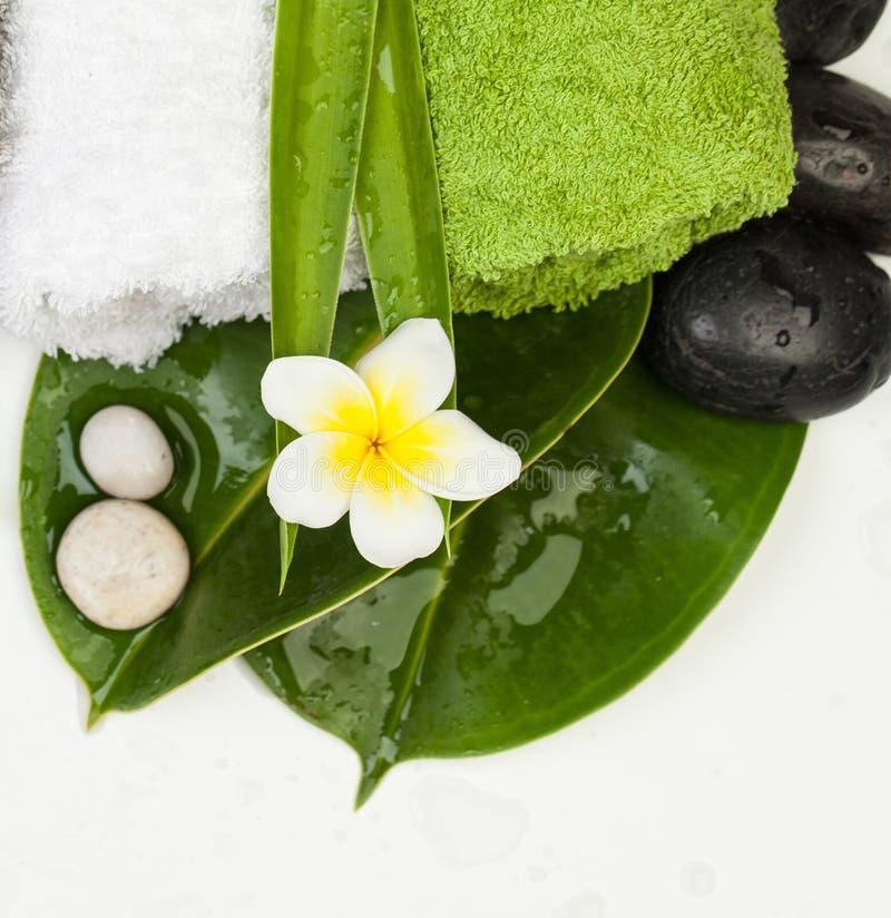 Grupo tropical para a massagem saudável da terapia dos termas na tabela branca imagens de stock royalty free