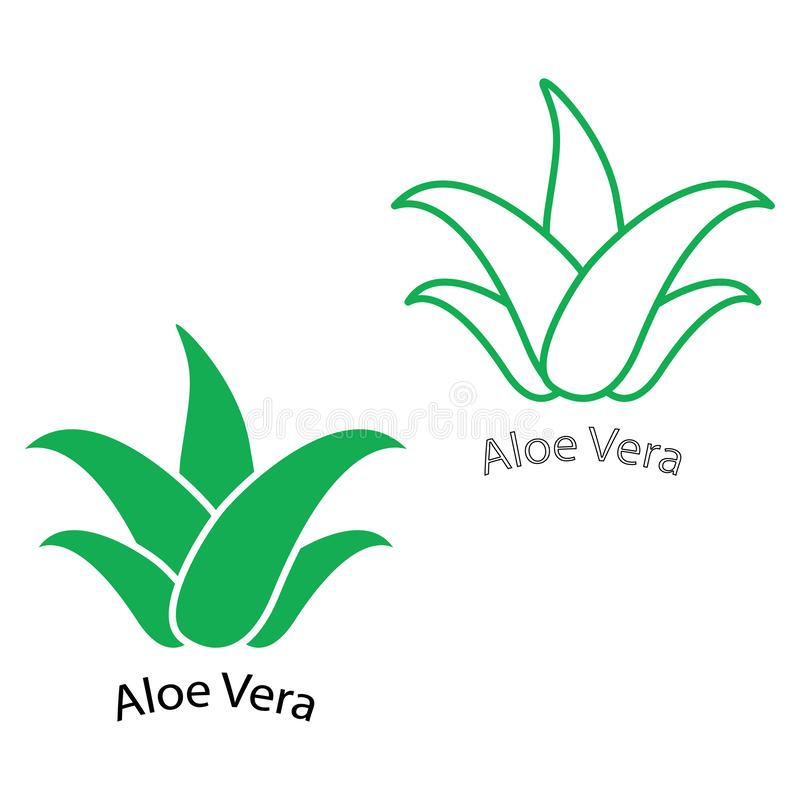 Grupo verde do ícone de vera do aloés Etiqueta orgânica natural do pacote do produto Cosmético ou creme do creme hidratante ilustração do vetor