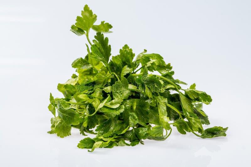 Grupo verde fresco maduro da salsa, ingrediente brilhante no fundo branco imagem de stock royalty free
