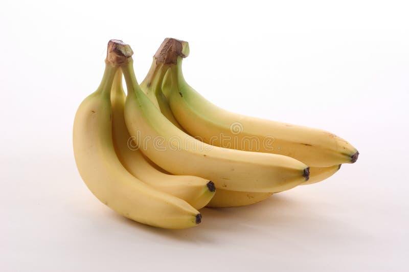 Grupos da banana imagem de stock