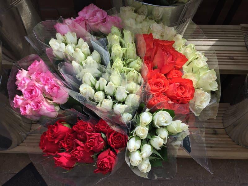 Grupos das rosas imagem de stock