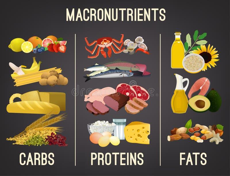Grupos de alimentos principales ilustración del vector