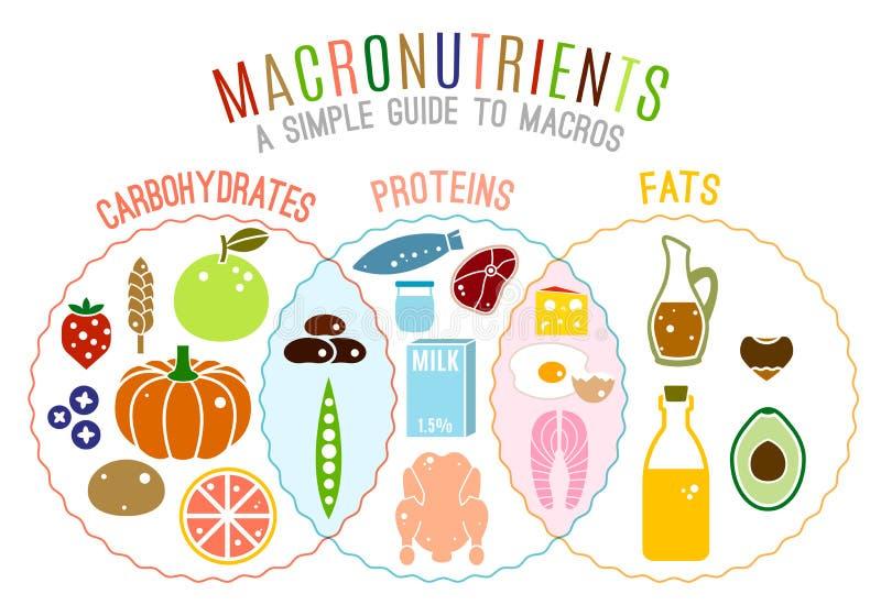 Grupos de alimentos principales libre illustration
