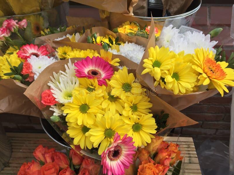 Grupos de flores coloridas em umas cubetas fotografia de stock royalty free