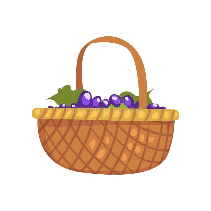 Grupos de uva na cesta de vime, ilustração do vetor do processo de produção da adega em um fundo branco ilustração stock