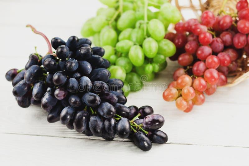 Grupos de uvas azuis e cor-de-rosa e verdes maduras frescas em pranchas brancas de madeira velhas fotos de stock