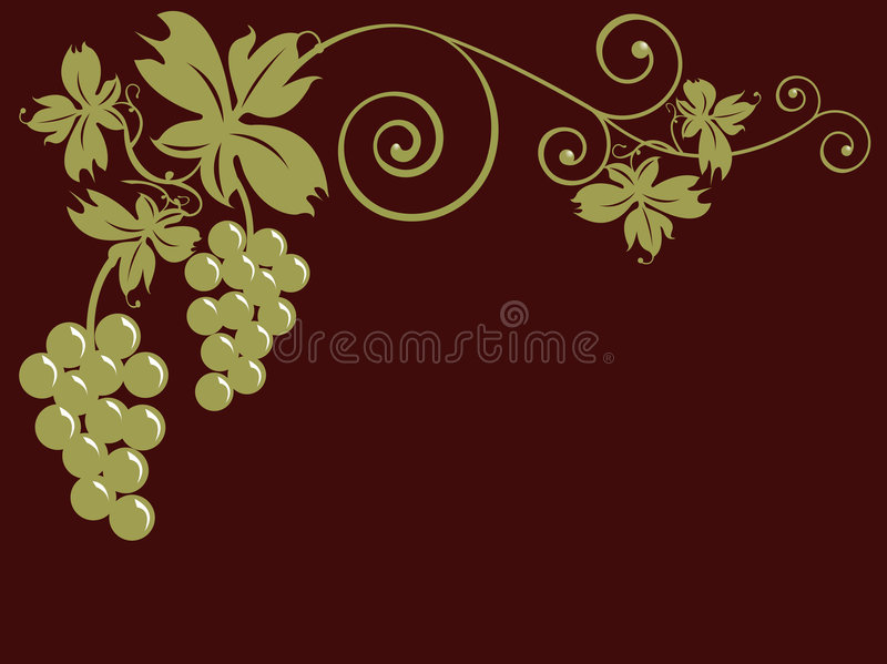 Grupos de uvas e de folhas ilustração royalty free