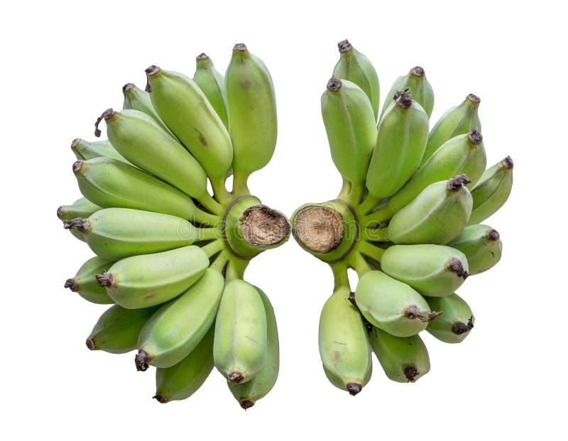 Grupos verde da banana dois imagem de stock