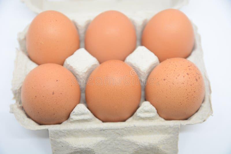 Grupowi świezi jajka w kartonie tapetują natury jedzenie od gospodarstwa rolnego dla śniadaniowego jedzenia i obraz stock