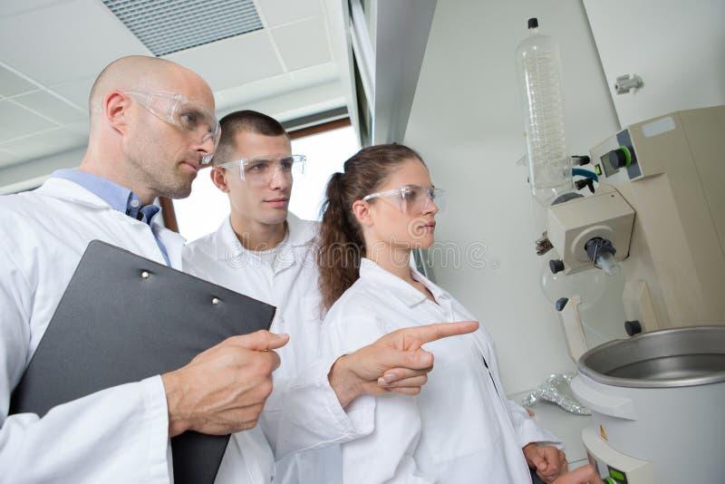 Grupowi naukowowie pracuje przy laboratorium fotografia royalty free