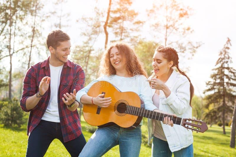 Grupowi og przyjaciele z gitarą w parku obraz stock