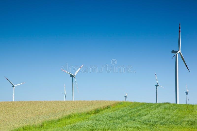 grupowy wiatr obrazy stock