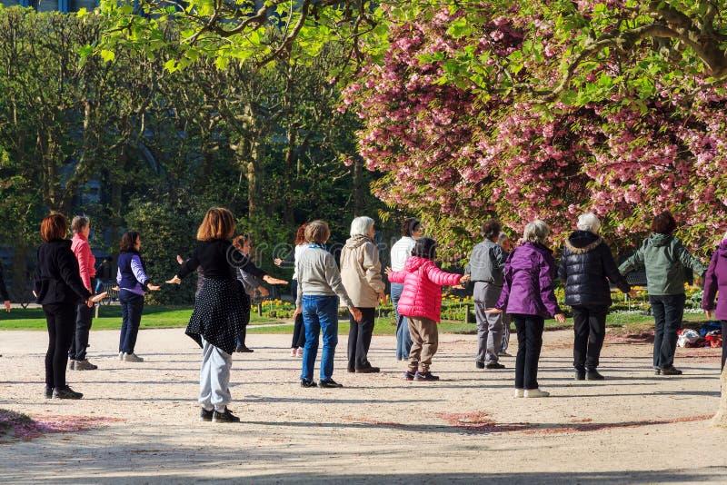 Gruppövning i parkera arkivbild