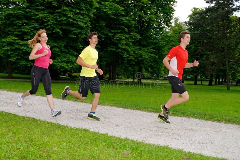 Grupp av att jogga för idrottsman nen royaltyfria foton