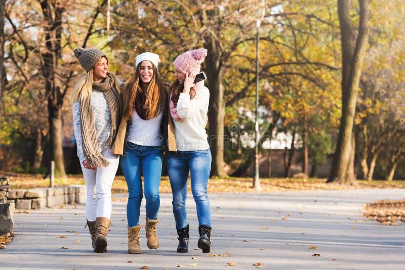 Grupp av att le högskolaflickor som går i parkera - kamratskap royaltyfri bild