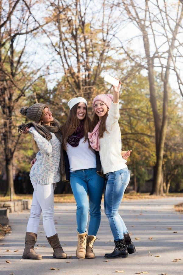 Grupp av att le högskolaflickor som går i parkera - kamratskap royaltyfria bilder