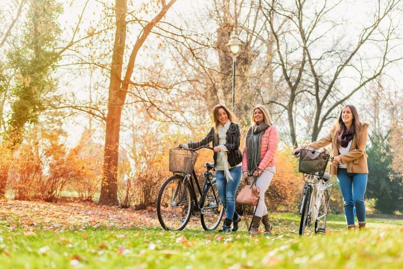 Grupp av att le högskolaflickor som går i parkera - kamratskap arkivfoton