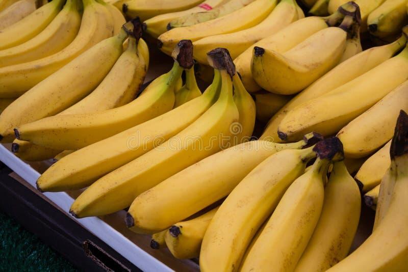 Grupp av bananer på stånd royaltyfri fotografi