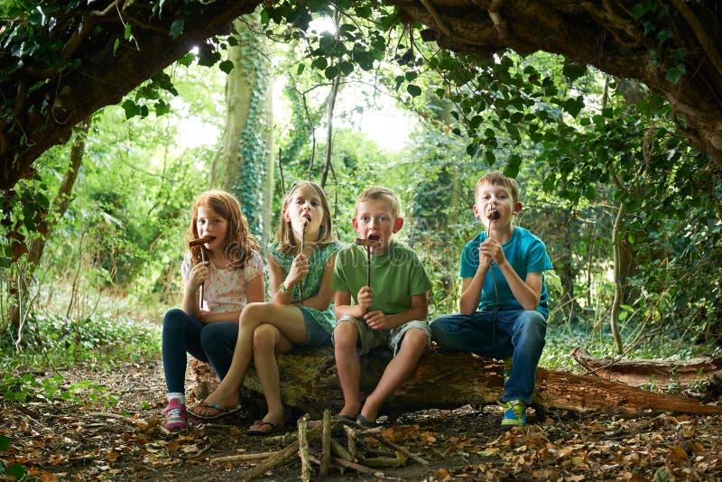 Grupp av barn som äter korvar i skogsmarkläger royaltyfria foton