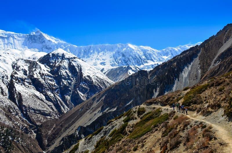 Grupp av bergtrekkers som vandrar i Himalayaslandskap royaltyfria bilder