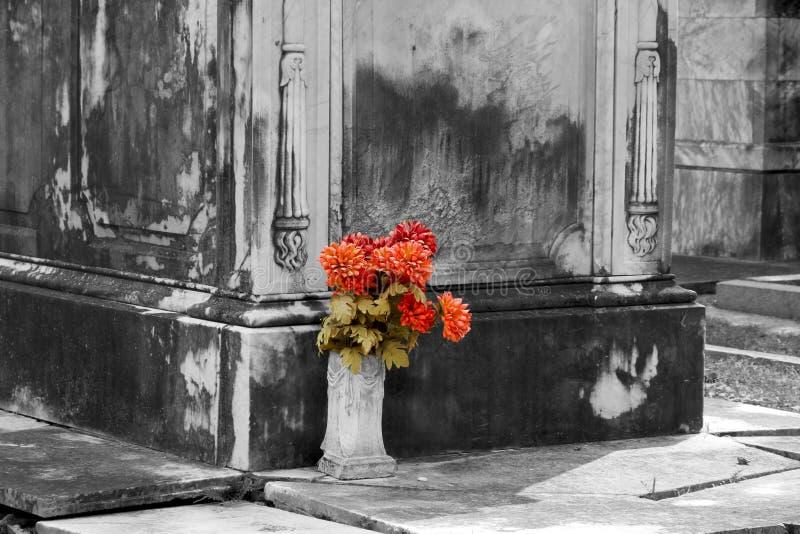 Grupp av blommor arkivfoto