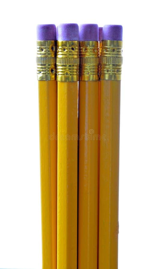 Grupp av blyertspennor royaltyfri fotografi