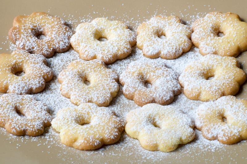 Grupp av canestrellikex som täckas med pudrat socker royaltyfri bild