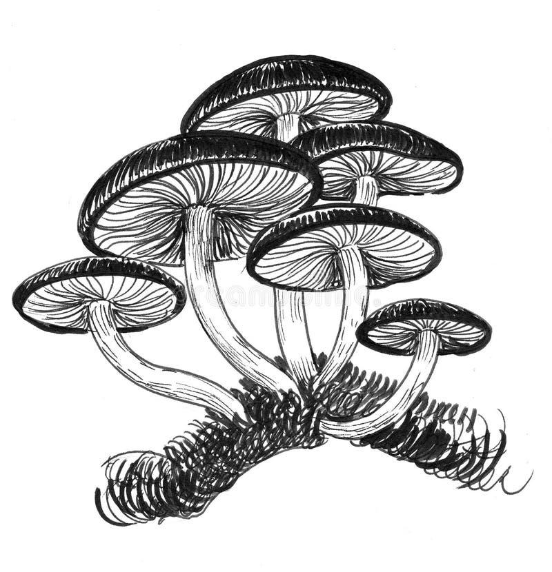 Grupp av champinjoner vektor illustrationer