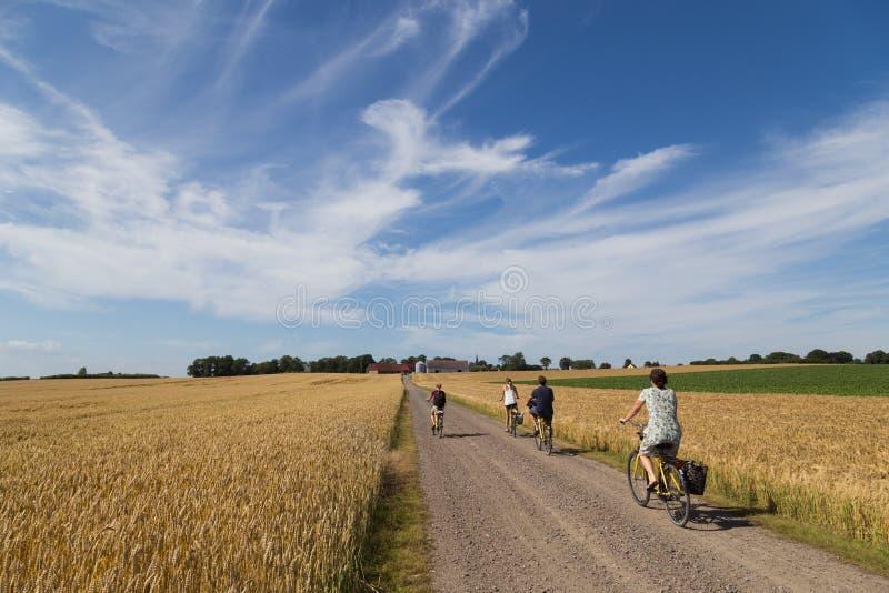 Grupp av cyklisten på bygden royaltyfria foton