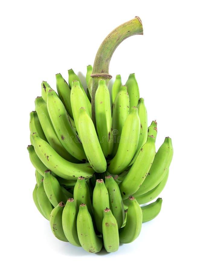 Grupp av den nya gr?na cavendish bananen som isoleras p? vit bakgrund royaltyfri fotografi