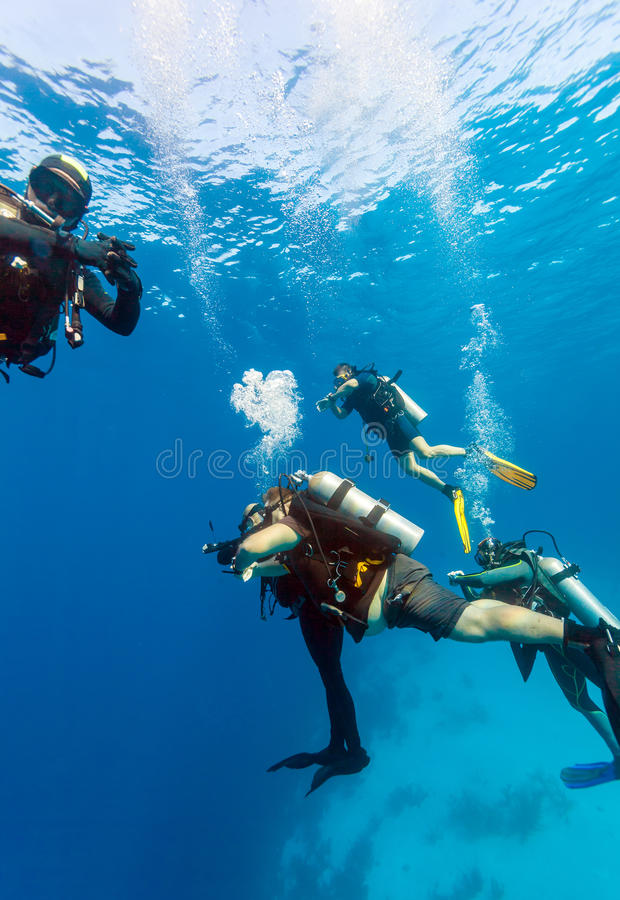 Grupp av dykare på 5 minut säkerhetsstopp royaltyfri foto