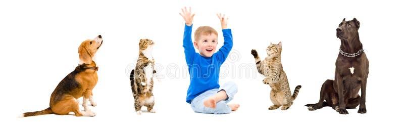 Grupp av ett gladlynt barn och skämtsamma husdjur arkivbild