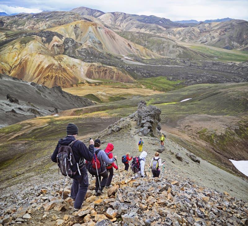 Grupp av fotvandrare i bergen royaltyfri foto