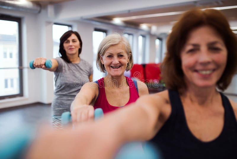 Grupp av gladlynta kvinnliga pensionärer i idrottshallen som gör övning med hantlar fotografering för bildbyråer