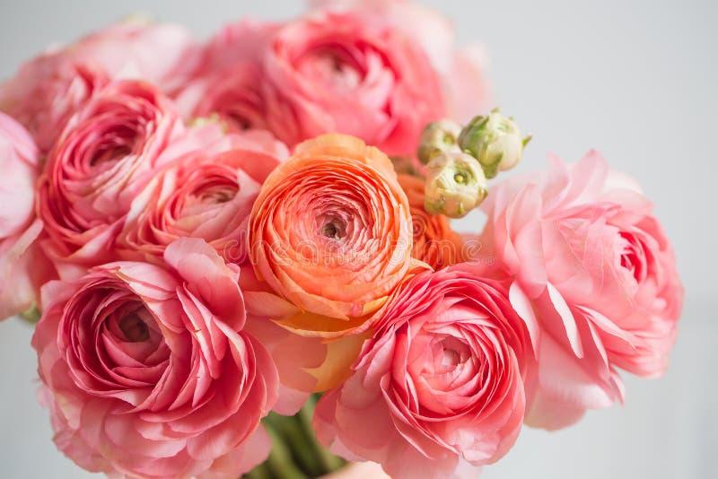 Grupp av gränsen - för smörblommaljus för rosa ranunculus persisk bakgrund, träyttersida exponeringsglas isolerad vasewhite royaltyfri foto