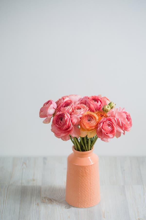 Grupp av gränsen - för smörblommaljus för rosa ranunculus persisk bakgrund, träyttersida exponeringsglas isolerad vasewhite royaltyfria foton