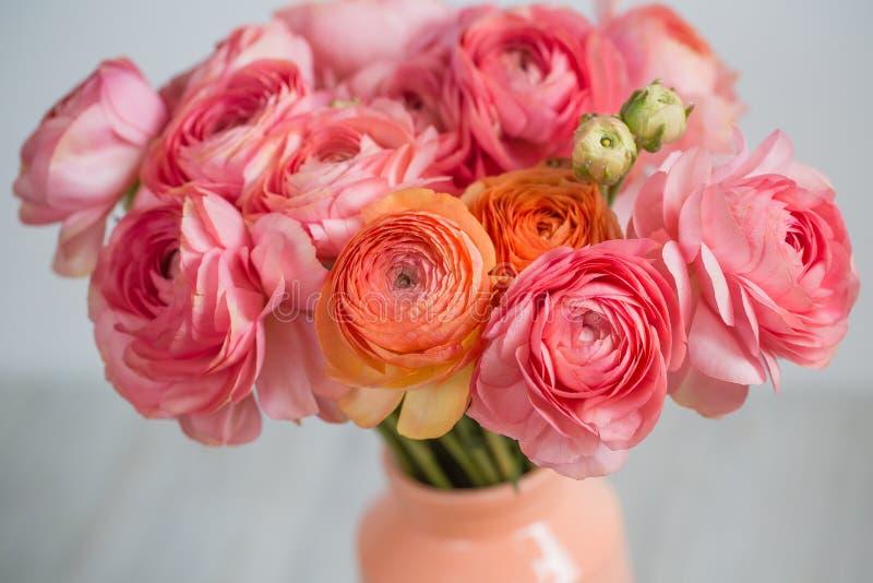 Grupp av gränsen - för smörblommaljus för rosa ranunculus persisk bakgrund, träyttersida exponeringsglas isolerad vasewhite fotografering för bildbyråer