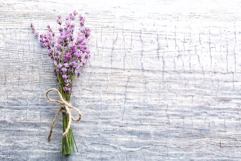 Grupp av härliga blommande lavendelblommor på träbakgrund arkivbilder