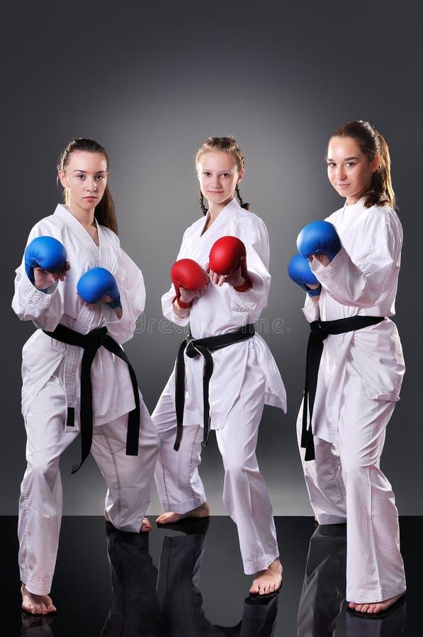 Grupp av härliga unga kvinnliga karatespelare som poserar på den gråa bakgrunden fotografering för bildbyråer